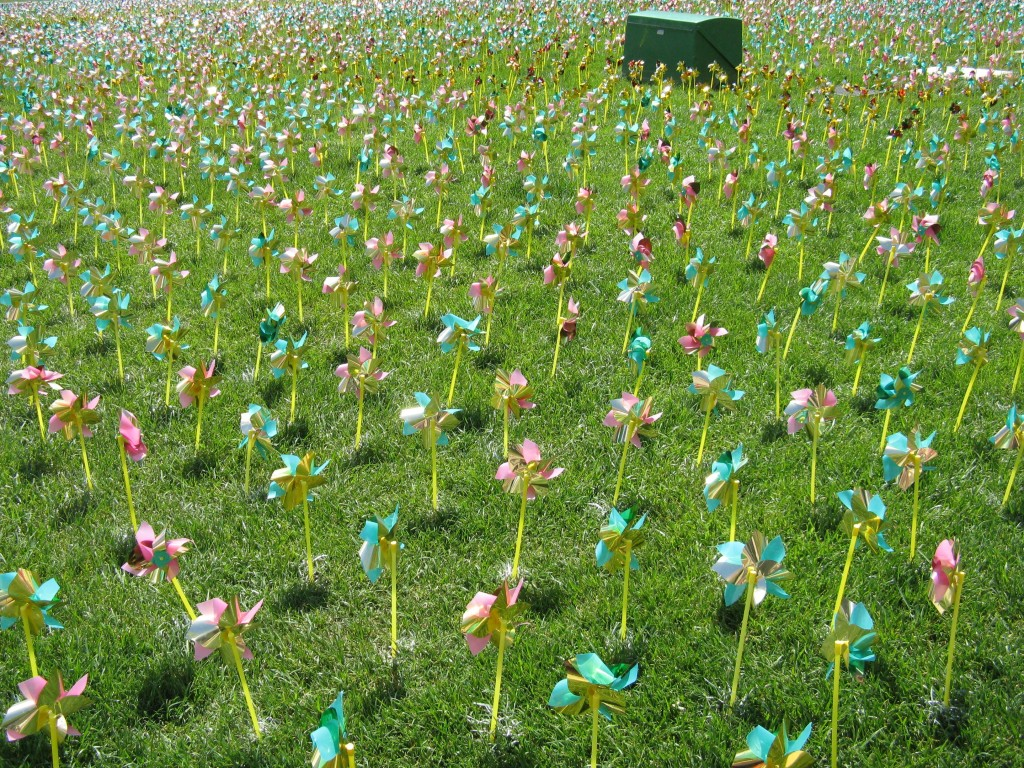 A field of pinwheels